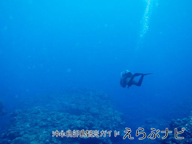 海はやっぱり青いな~