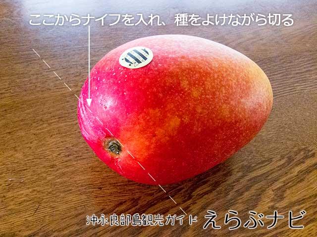 沖永良部島特産品完熟マンゴーの切り方